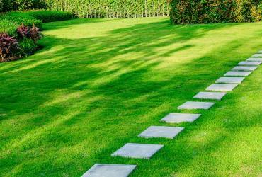 Les étapes clés pour l'entretien de votre jardin
