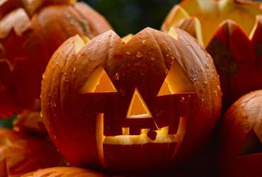 Décorer votre jardin pour Halloween : 5 idées pour frissonner…
