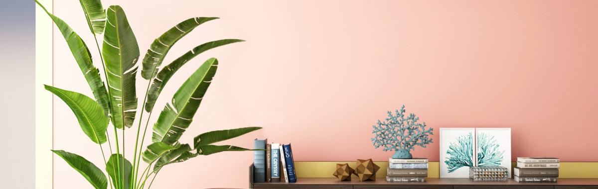 couleurs tropicales deco chambre