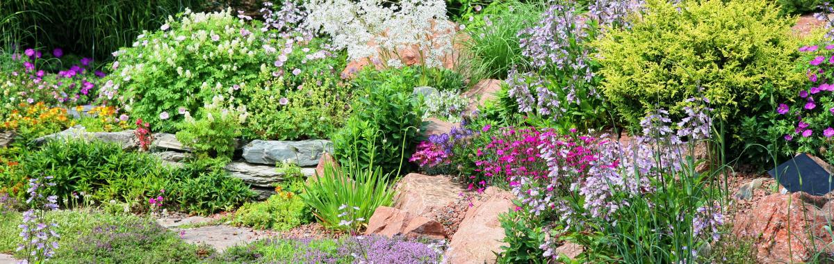 idée-amenagement-allee-de-jardin