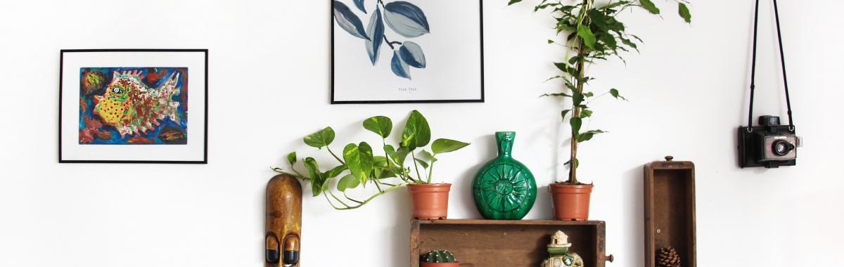 décoration écologique