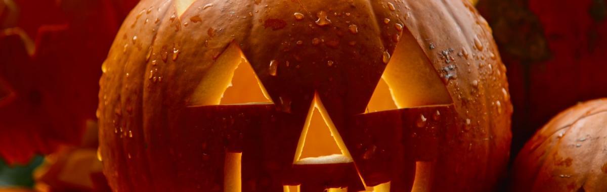 décoration de jardin pour halloween