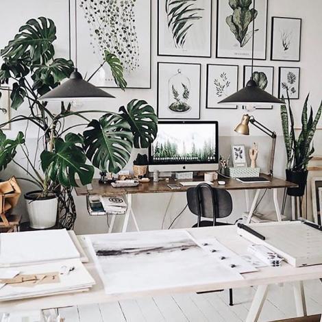 bureau style tropical