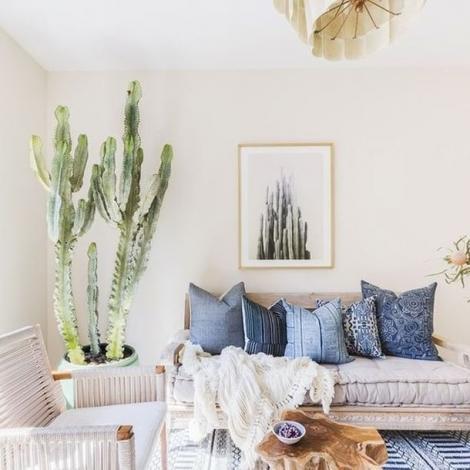 cactus deco tropicale