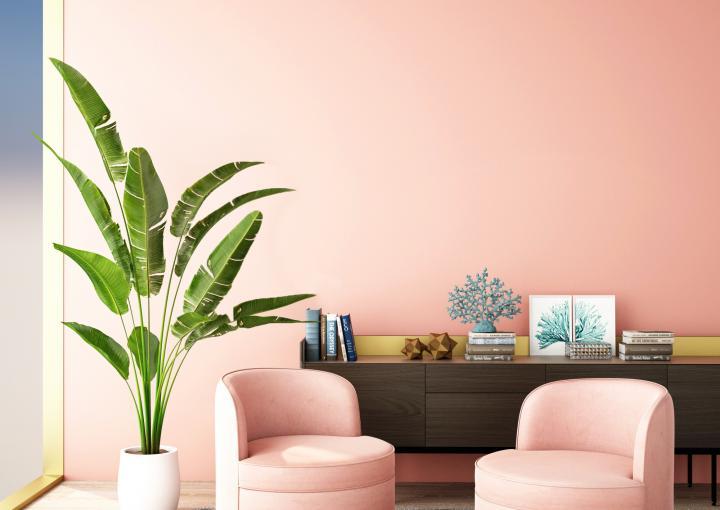 Décoration chambre tropicale pour une ambiance exotique