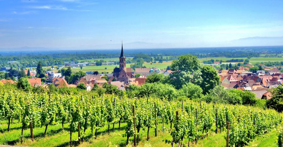 Le Groupe Vivialys, partenaire de la marque Alsace