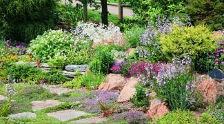 Créer un parterre de fleurs sans entretien