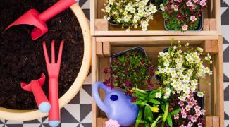 Faire du compost dans son jardin ou en appartement : efficace et naturel !