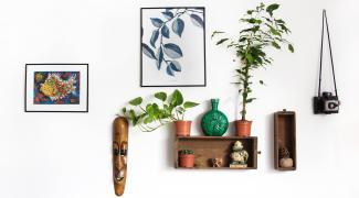 Et si vous optiez pour une décoration écologique dans votre maison ?