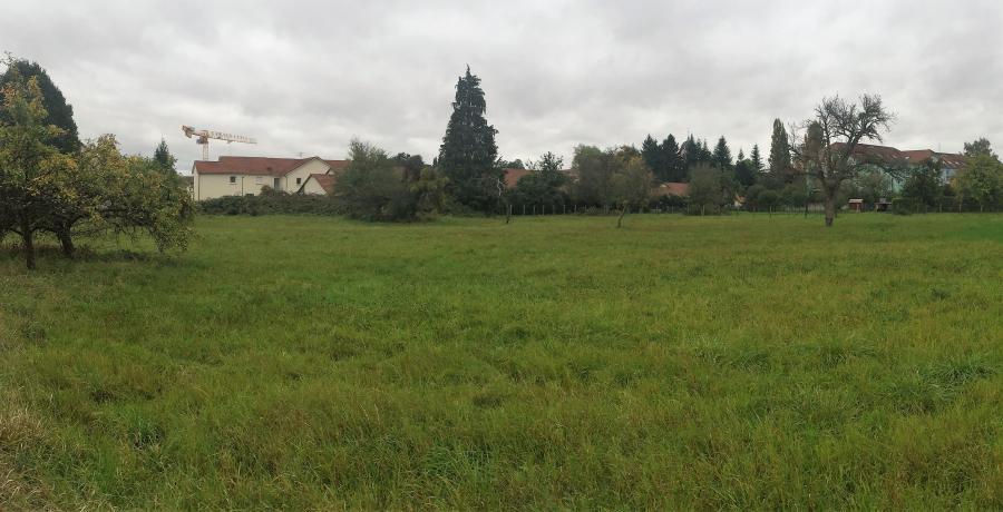 appartements duplex Châtenois les Forges : Les Carrés d'Hortense