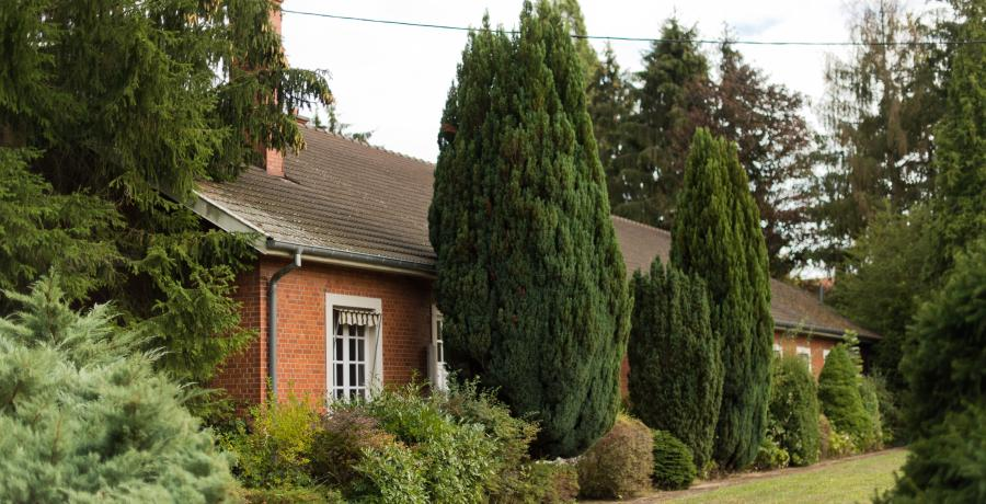 Les Carrés Cottage au coeur d'Uffheim