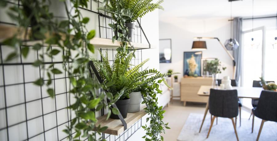 amenagement cuisine duplex astuces tendances plante