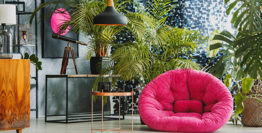 pouf et plantes styles jungle
