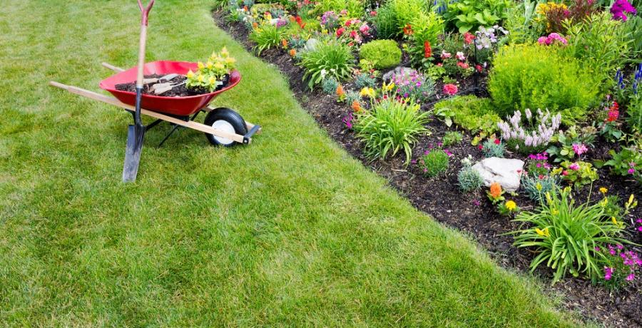 amenagement jardin educatif conseils brouette