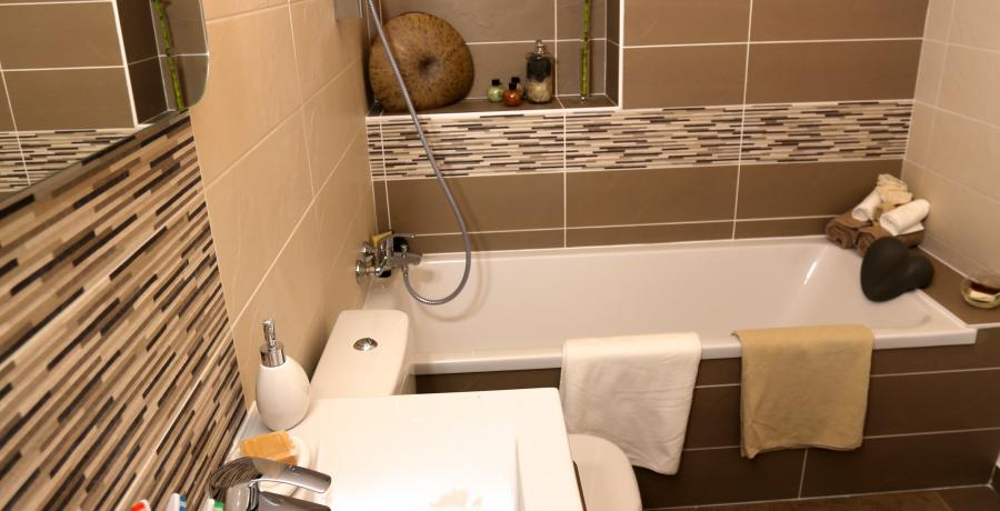 programme immobilier neuf à Sallenôves: les carrés du Francisque duplex-jardin salle de bain